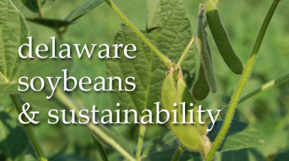 Five Ways Delaware Farmers Are Excelling at Sustainability