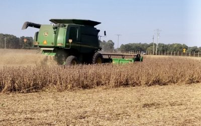 Delaware Soybean Board Encourages Farmers to Complete Contest Yield Checks